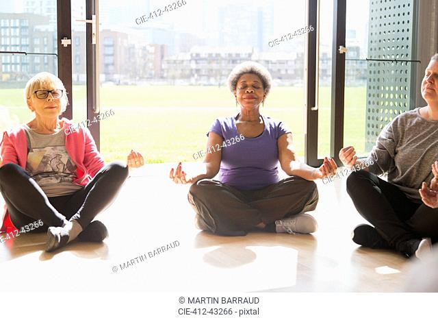 Serene active seniors meditating in sunny window