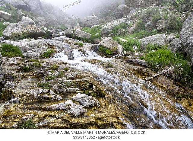 Stream and fog at Eliza gorge in the Sierra de Gredos. Avila. Spain