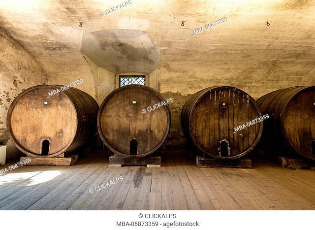 Wood barrels of wine cellar of the monastery of Astino, Longuelo, province of Bergamo, Lombardy, Italy, Europe
