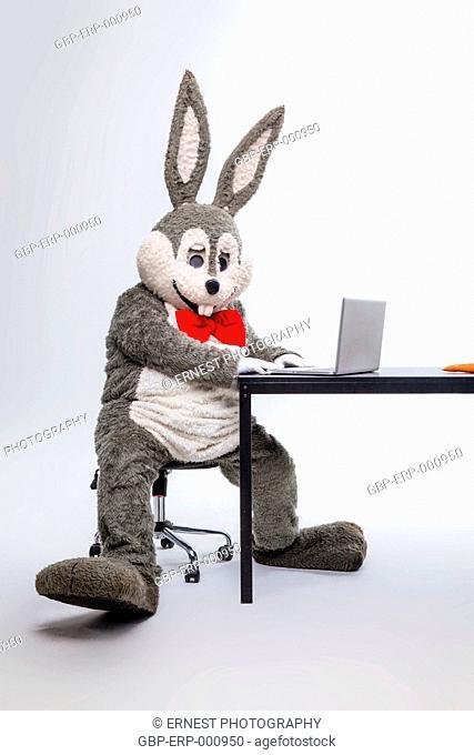 Doll, plush, rabbit