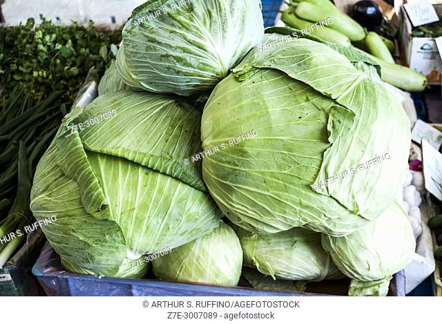 Cabbage, produce in Fujairah market, Fujairah, United Arab Emirates