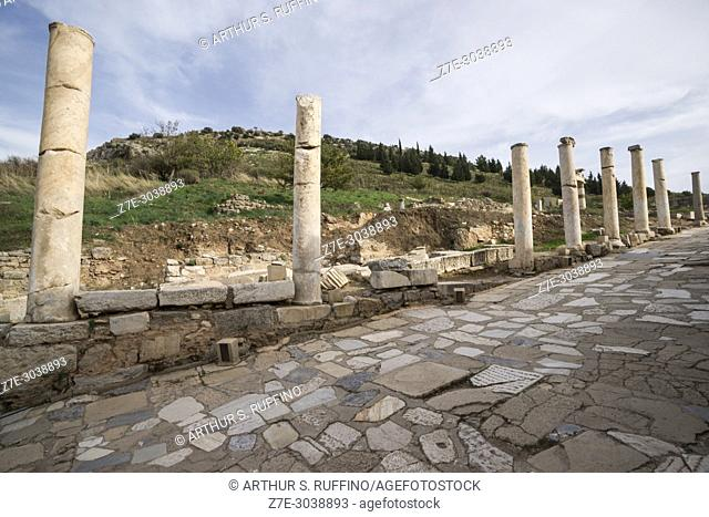 Ruins of columns line Curetes Way (Curetes Street) in the archaeological site of the ancient Greco-Roman city of Ephesus