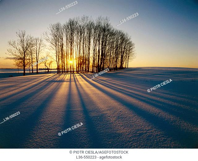 Winter sunset. Suwalki region, Northern Poland
