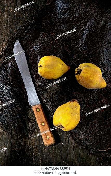 Three whole juicy quinces with vintage knife over black wooden table in sunlight. Dark rustic style. Top view