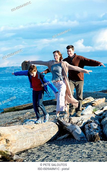 Family walking across tree trunk at coast