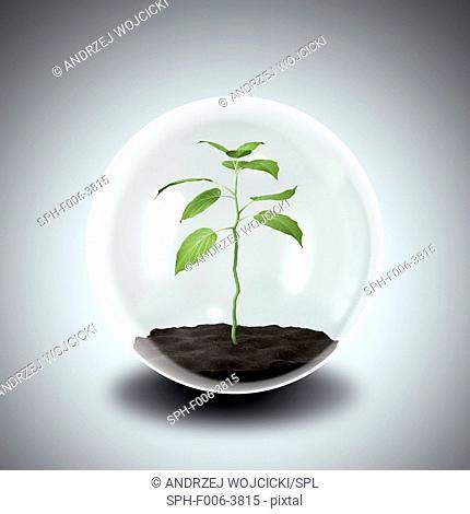 Environmental protection, conceptual computer artwork