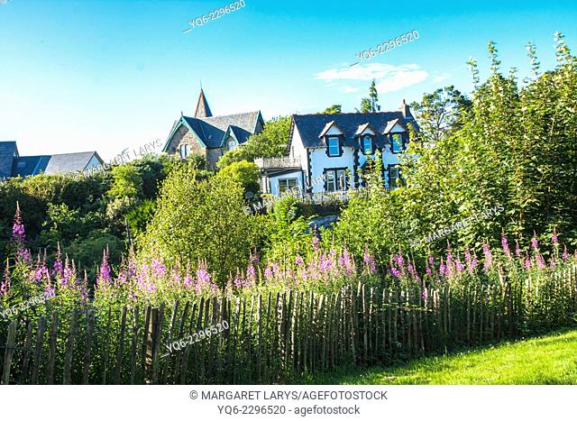 Beautiful house with flowers and plants in the garden