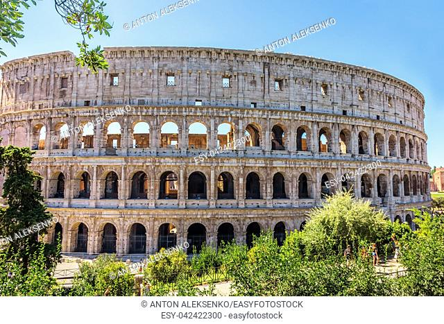Coliseum in greenery, summer view, no people, Rome Italy