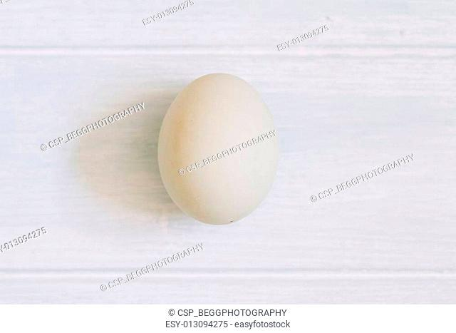 Single blue duck egg on painted wood