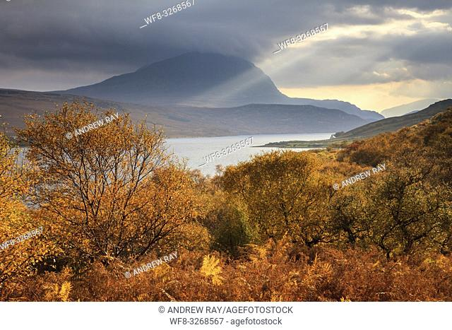 Ben Hope captured from woodland on the western side of Loch Hope, in the North West Highlands of Scotland