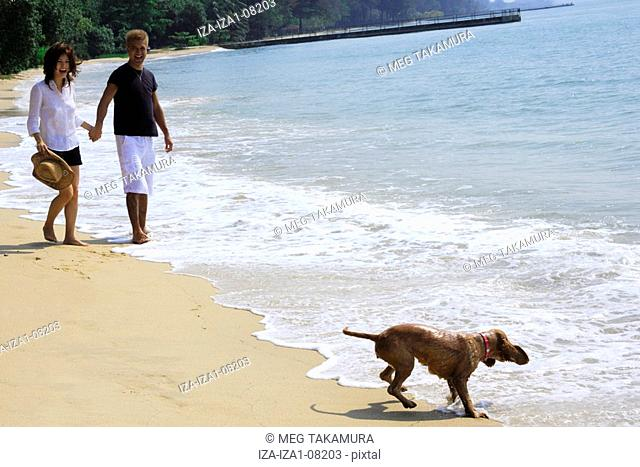 Young woman and a mid adult man holding hands and standing on the beach with a dog