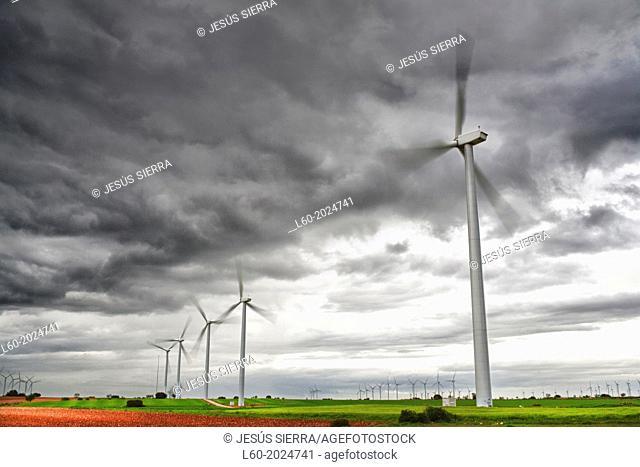 Wind turbines. Albacete. Castilla-La Mancha. Spain