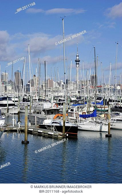 Sailboats in the Westhaven Marina, skyline and Skytower at back, Auckland, New Zealand, PublicGround