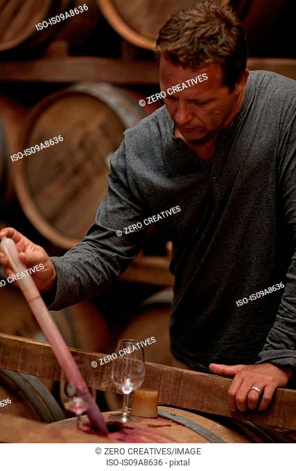 Sampling wine in barrels