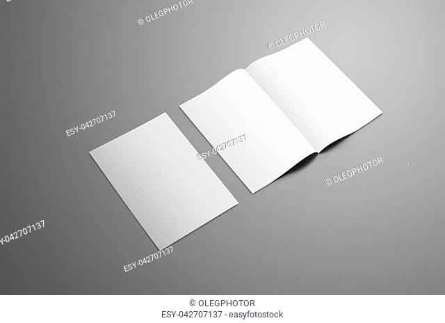 Business mockup with two A4, (A5) bi-fold brochure with realistic shadows isolated on gray background. One booklet is closed the second is open on the spread