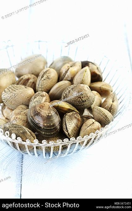 almejas / clams