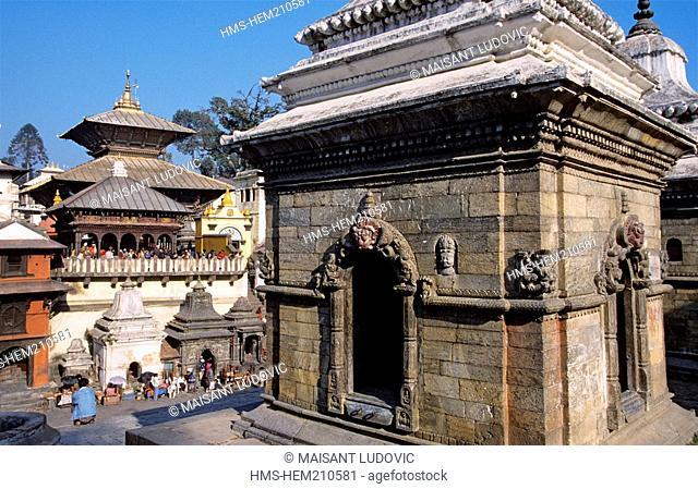 Nepal, Kathmandu Valley, listed as World Heritage by UNESCO, Kathmandu, Pashupatinath Hindu temple dedicated to Shiva