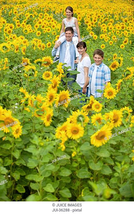 Smiling family among sunflowers in sunny meadow