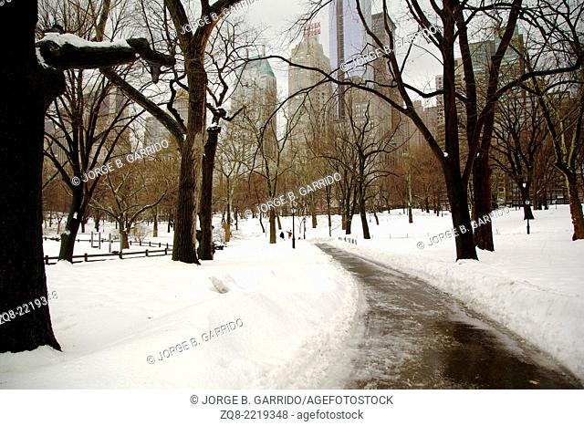 Winter in New York, Central Park