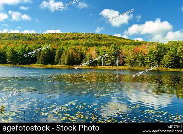 Breakneck Ponds in Acadia National Park on Mount Desert Island, Maine, USA