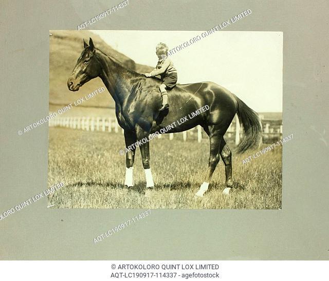Photograph - Phar Lap & Gerald Telford, 1931, Mounted sepia photograph depicting Gerald Telford, son of trainer Harry Telford, sitting on the back of Phar Lap