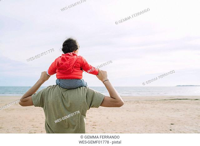 Back view of father carrying his little daughter on shoulders on the beach