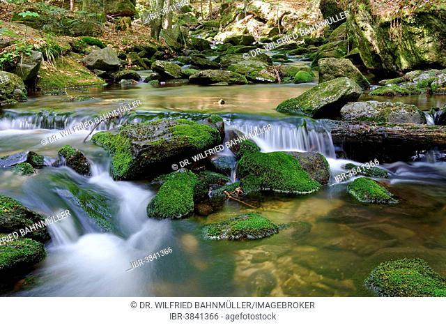 Sagwasser creek in the Felswandergebiet hiking area, near Neuschönau, Bavarian Forest National Park, Lower Bavaria, Bavaria, Germany