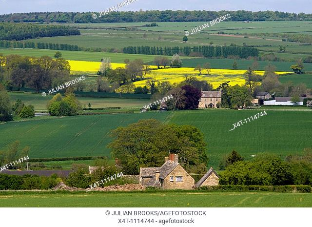 The view across the glyme valley in the Cotswolds, Oxfordshire in Spring, with oilseed rape and mixed arable fields