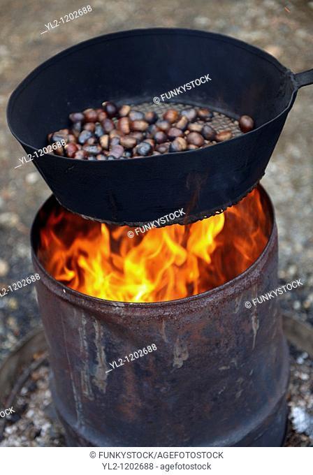 Fresh organic Chestnuts roasting Castanea sativa