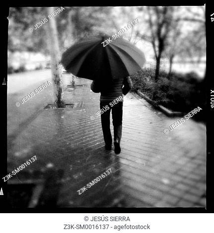 Umbrella and man in Madrid