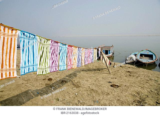 Laundry done by the Dhobi walas, people of the laundry cast, drying at the ghats along the holy river Ganges, Varanasi, Uttar Pradesh, India, Asia