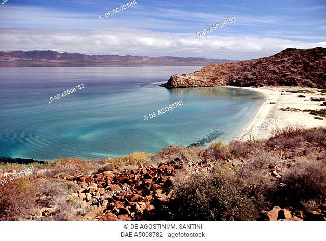 Bahia Concepcion coast, between Loreto and Mulege, Baja California Sur, Mexico