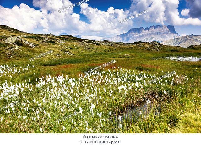 France, Auvergne-Rhone-Alpes, Trail in Reserve Naturelle de Carlaveyron