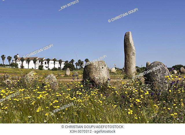 cromlech of Xerez near the perched village Monsaraz, Municipality of Reguengos de Monsaraz, Alentejo region, Portugal, southwertern Europe
