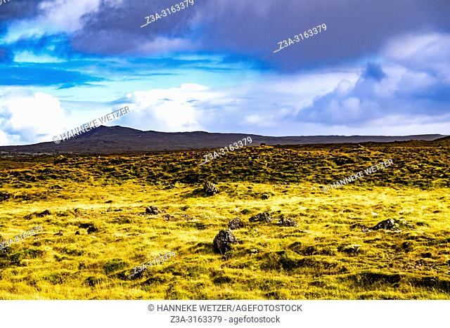 Lava fields of Snæfellsnes in West-Iceland