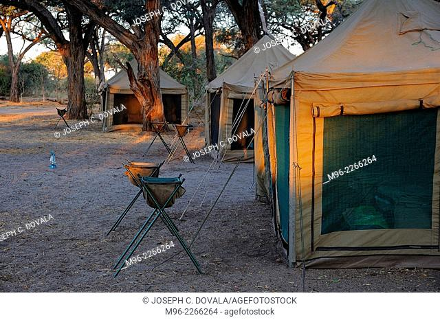 Guest tents setup and waiting, Moremi, Botswana, Africa