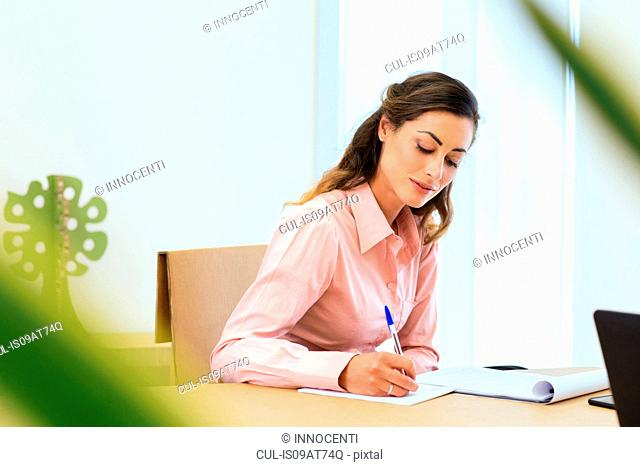 Young businesswoman making notes in office