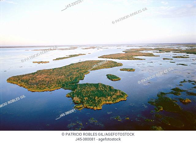 Aerial of Tampico wetlands. Tamaulipas. Mexico