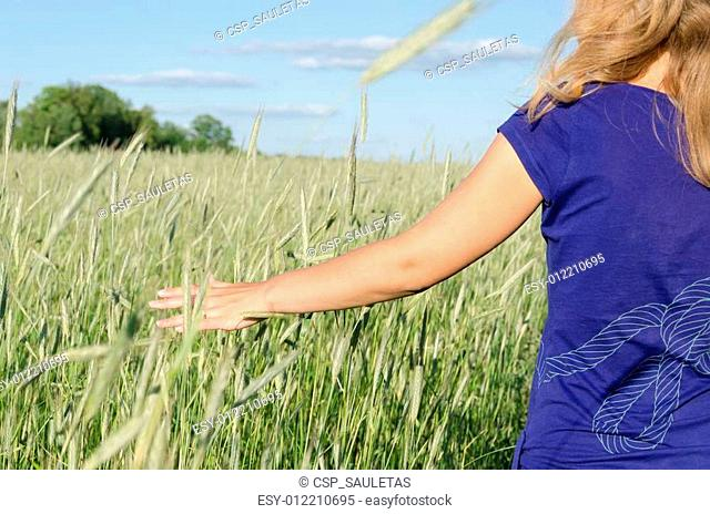 woman hand along the high green ray in summer