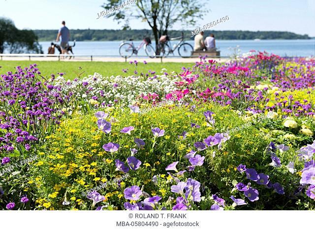 Germany, Mecklenburg-Western Pomerania, 'Waren an der Müritz', lakeside promenade
