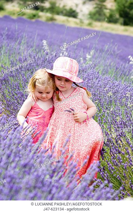 3 and 5 year old sisters standing together in a field ful of lavender, with their arms round each other