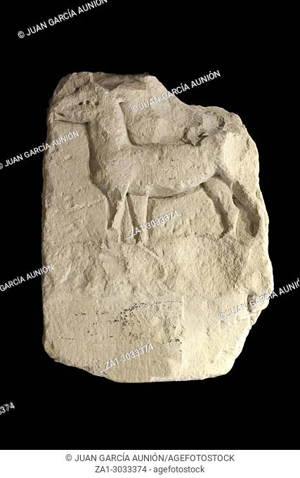 High relief depicting a deer. First of Iberian Culture artistic expressions. Jaen Museum. Jaen, Andalusia, Spain