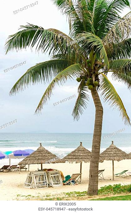 Palms and sunbeds at the China Beach in Da Nang, Vietnam. It is also called Non Nuoc Beach. South China Sea on the background