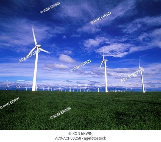 The Castle River Wind Farm near Pincher Creek, Alberta, Canada