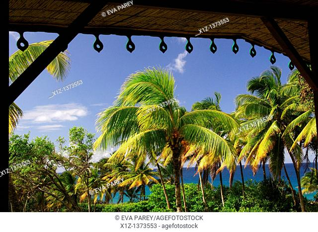 L'anse charpentier in the north of Martinique, a caribean island