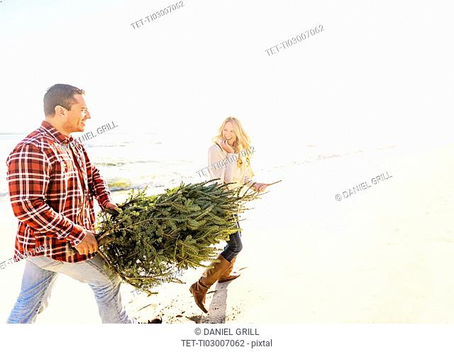 Loving couple walking on beach with tree
