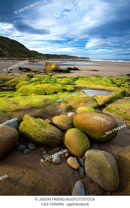 England, North Yorkshire, Scarborough. Scalby Ness Sands, located north of Scarborough within the North York Moors National Park