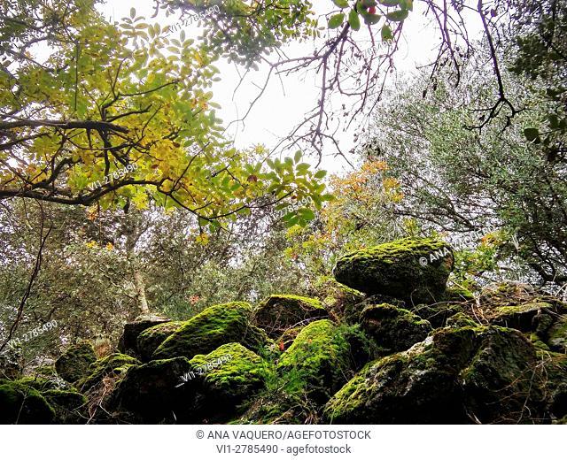 Beautiful corner of the mountains, Robledillo de Trujillo, Extremadura, Caceres