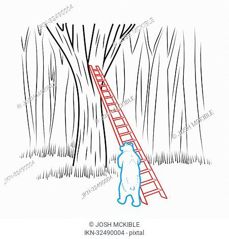 Bear leaning ladder against tree