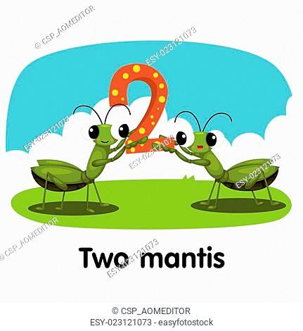Illustrator of number two mantis